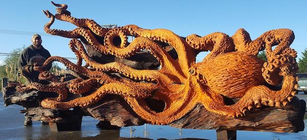 pacific octopus redwood 1