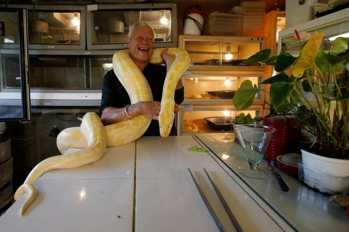 Would You House Over 400 Reptiles Where You Live?
