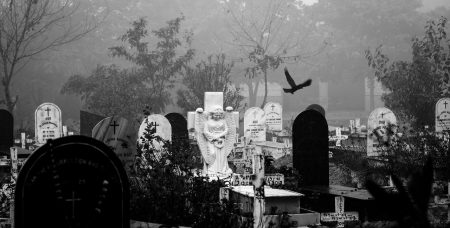 How Cemeteries are Turning Back Into Public Spaces