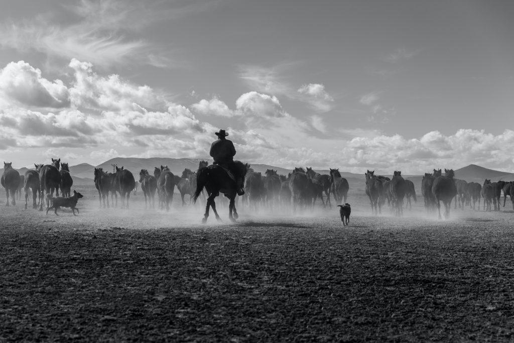 10 Cool Cowboy Slang Phrases We Should Bring Back