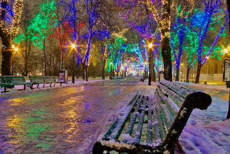 Colorful Christmas Lights In This Cutely Decorated Park Somewhere In The  World.