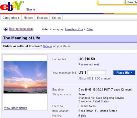 how to find the categoruu of an ebay ad