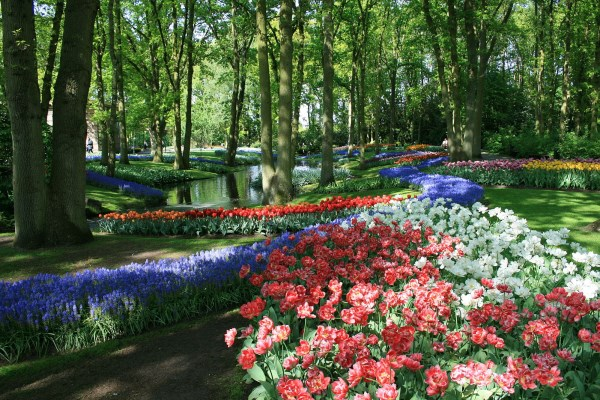 2Keukenhof Gardens The Netherlands