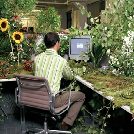 12 coolest pimped cubicles decorated cubicle oddee - Cubicle planters ...
