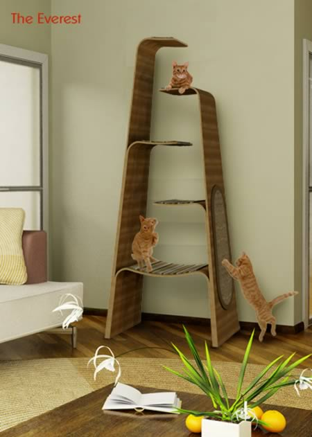 I Think This Is Ideal Cat Furniture; A Dream For Every Cat. Why Do Humans  Always Think That Furniture Must Be For Things? Why Donu0027t They Understand  That We ...