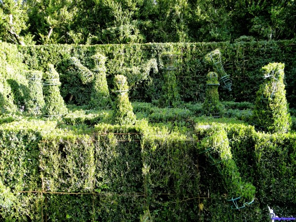 10 Coolest Displays Of Topiary Art Topiaries Topiary Plants Oddee