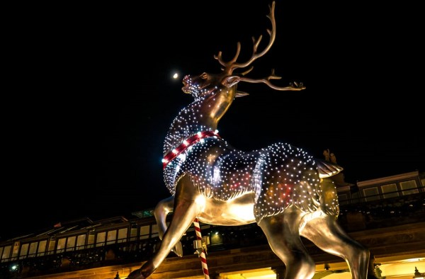 7the raunchy christmas deer light display that resulted in complaints - Deer Christmas Lights