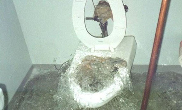9The Inmate Who Used A Clogged Toilet To Try To Escape