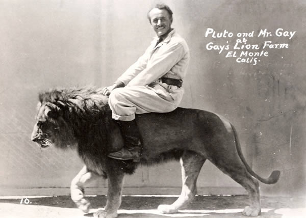 Aninimal Book: 10 Weird Photos of People Riding Animals - Oddee