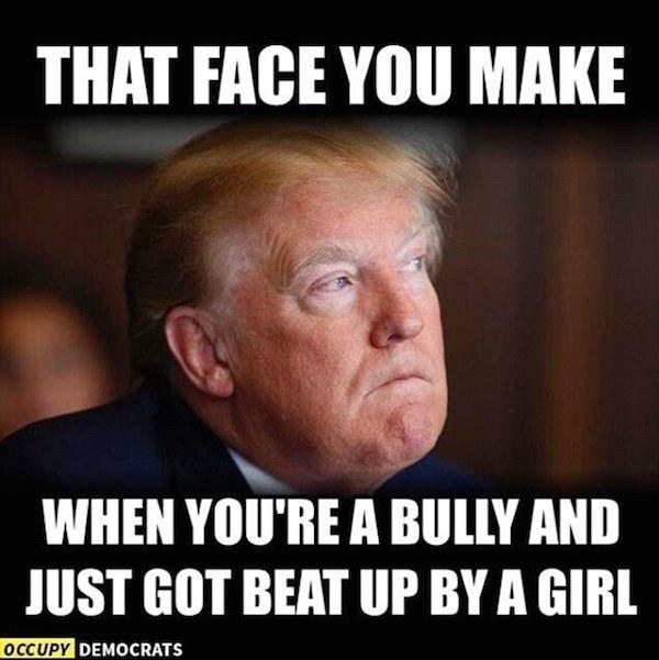 a99833_38D4C63F00000578 0 image m 16_1474962439849 10 hilarious 2016 presidential debate memes oddee