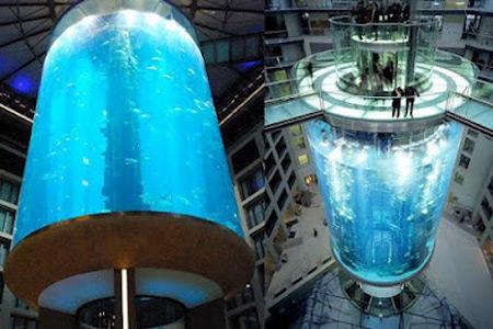 9 Coolest Aquariums Oddee